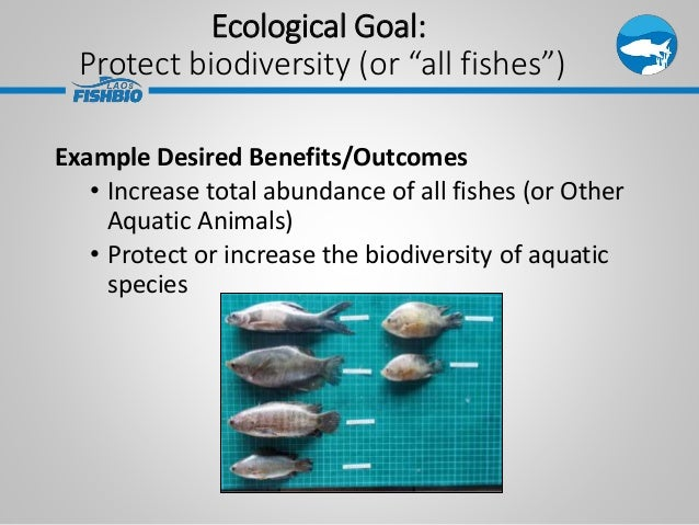 """Ecological Goal: Protect biodiversity (or """"all fishes"""") Example Desired Benefits/Outcomes • Increase total abundance of al..."""
