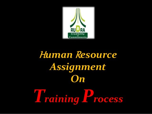 Human Resource Assignment On Training Process