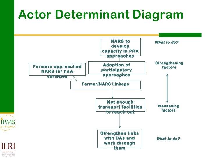 Actor Determinant Diagram Farmer/NARS Linkage Strengthening factors Weakening factors What to do? What to do? Adoption of ...