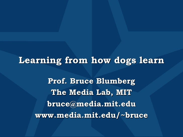 Learning from how dogs learn Prof. Bruce Blumberg The Media Lab, MIT [email_address] www.media.mit.edu/~bruce
