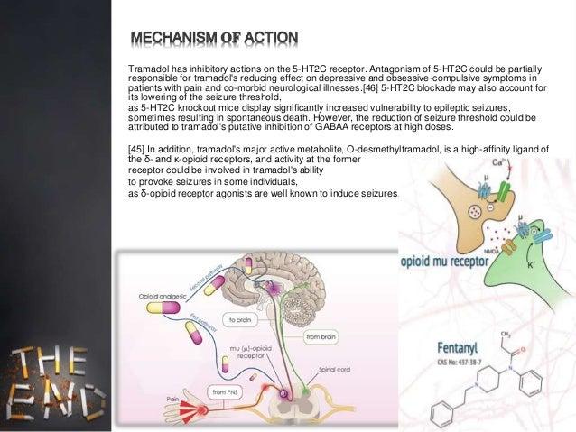 tramadol mechanism of action pdf