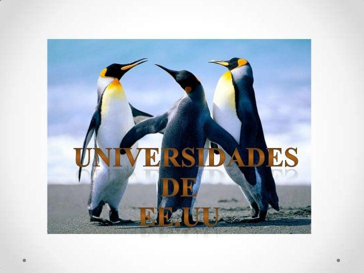UNIVERSIDADES DE                         EE.UU<br />