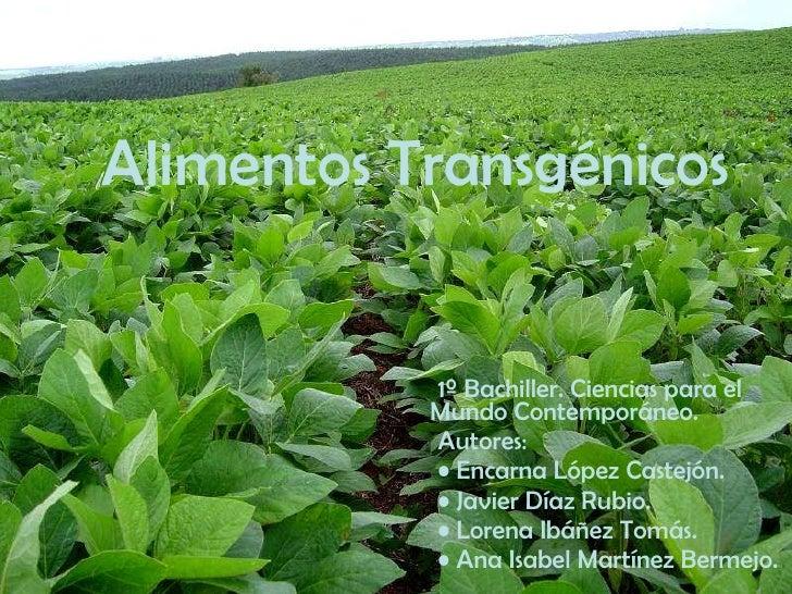 Alimentos Transgénicos <ul><li>1º Bachiller. Ciencias para el Mundo Contemporáneo. </li></ul><ul><li>Autores: </li></ul><u...