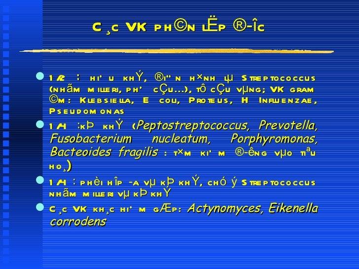 C¸c VK ph©n lËp ®îc <ul><li>1/2  :  hiÕu khÝ, ®iÓn h×nh lµ Streptococcus (nhãm milleri, phÕ cÇu...), tô cÇu vµng; VK gram...