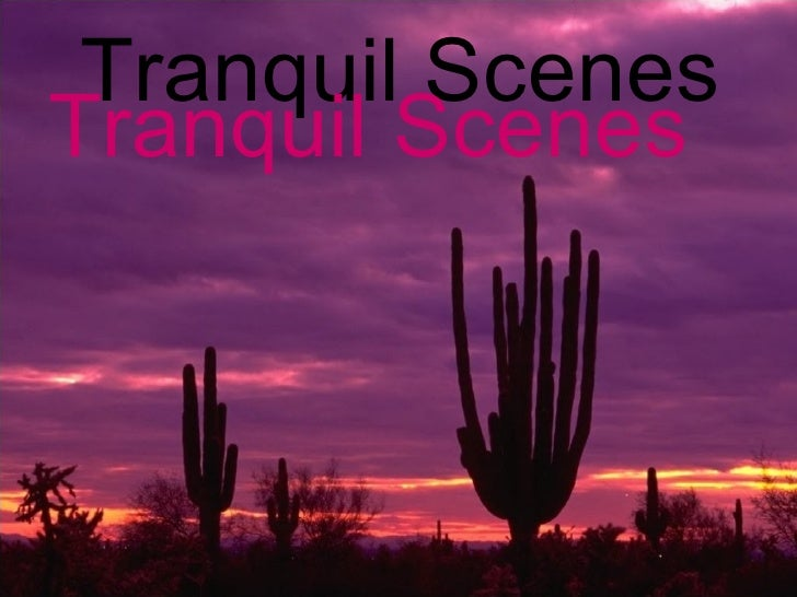 Tranquil Scenes Tranquil Scenes Tranquil Scenes