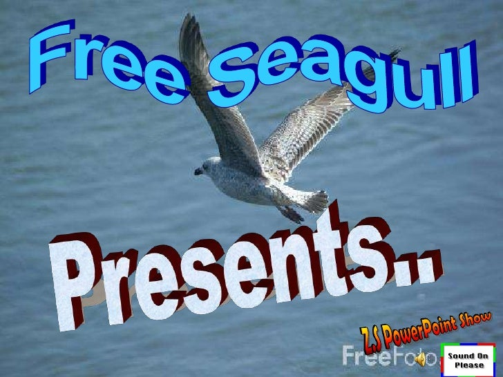 Free Seagull<br />Presents..<br />Z.S PowerPoint Show<br />