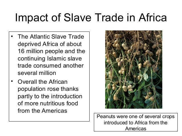 trans atlantic slave trade essay Evaluate the role of children in the atlantic slave trade during the 18th and 19th  centuries, based on analysis of evidence in the documents  your essay should.