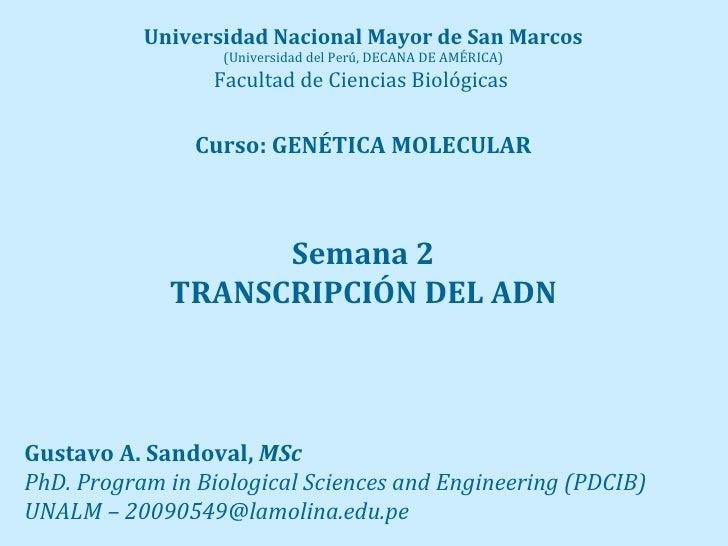 Universidad Nacional Mayor de San Marcos                   (Universidad del Perú, DECANA DE AMÉRICA)                  Facu...
