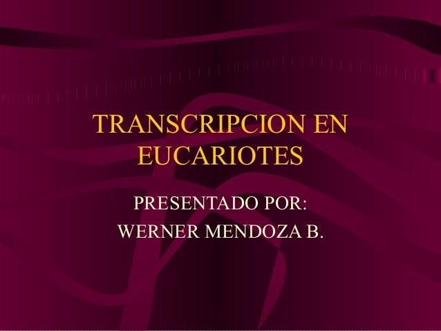 TRANSCRIPCION EN   EUCARIOTES  PRESENTADO POR: WERNER MENDOZA B.