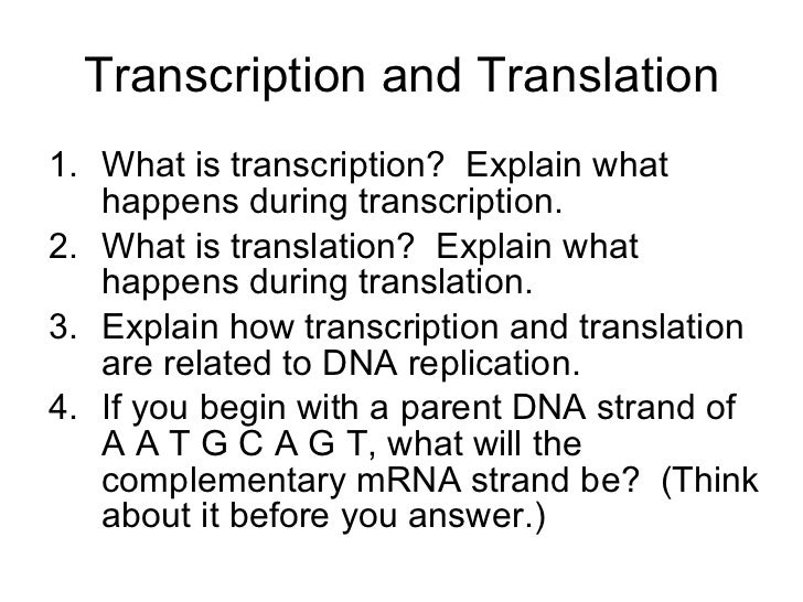 difference between transcription and translation pdf