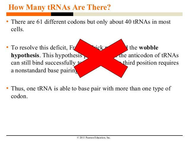 transcription notes Chapter 13 lecture notes: dna function i transcription (general info) a  transcription is the synthesis of rna using dna as a template b early evidence .