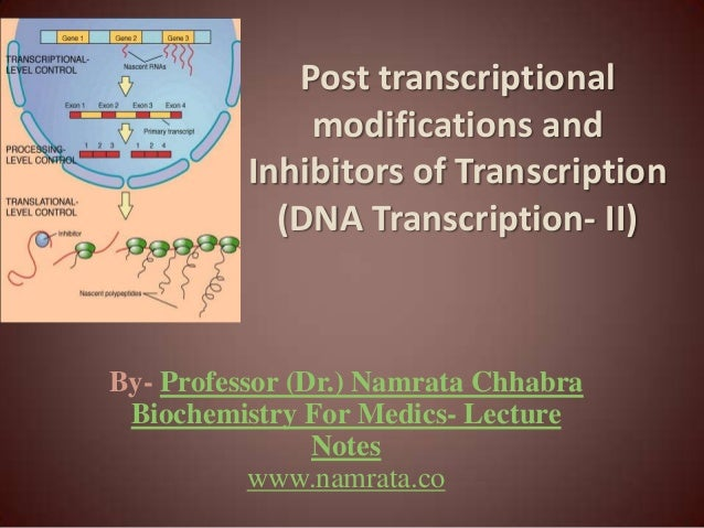 Post transcriptional modifications and Inhibitors of Transcription (DNA Transcription- II) By- Professor (Dr.) Namrata Chh...
