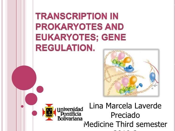 Transcription in prokaryotes and eukaryotes; gene Regulation.<br />Lina Marcela Laverde Preciado<br />Medicine Third seme...