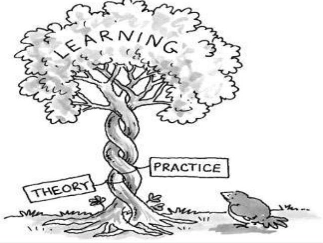 Transfer of adult learning theories into practice