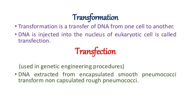 transformation transfection transduction Transfer of dna between bacterial cell