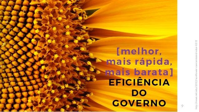 9 [melhor, mais rápida, mais barata] EFICIÊNCIA DO GOVERNO http://news.mit.edu/2012/sunflower-concentrated-solar-0111