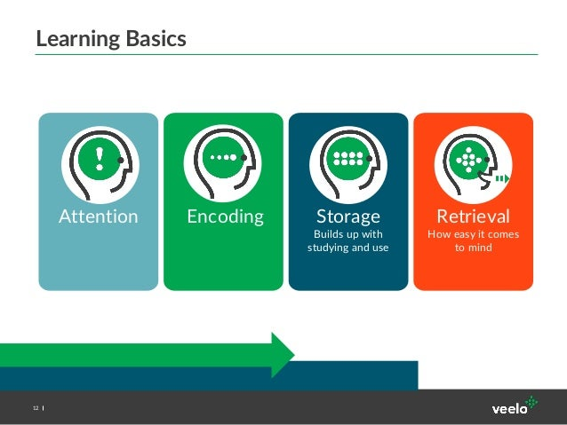 improving memory encoding storage and retrieval In this essay i will discuss the three processes of memory: encoding, storage, and retrieval i will also discuss encoding techniques such as the method of loci, which improve the span of memory ii.