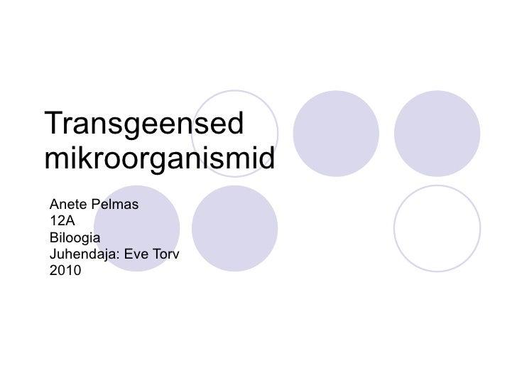 Transgeensed mikroorganismid Anete Pelmas 12A Biloogia Juhendaja: Eve Torv 2010