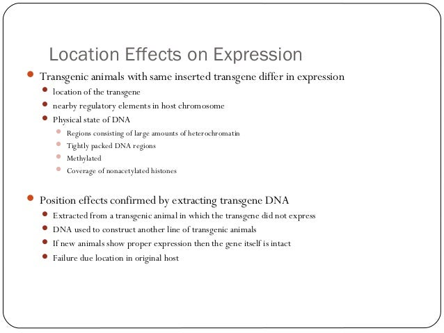 Location Effects on Expression  Transgenic animals with same inserted transgene differ in expression  location of the tr...