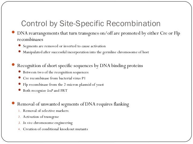 Control by Site-Specific Recombination  DNA rearrangements that turn transgenes on/off are promoted by either Cre or Flp ...
