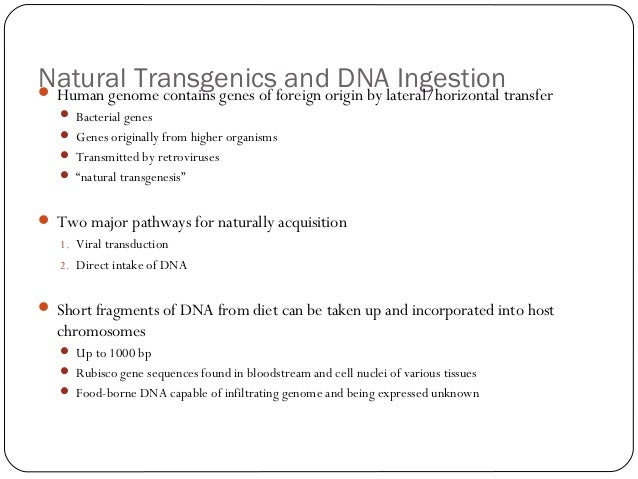 Natural Transgenicsforeign origin by lateral/horizontal transfer and DNA Ingestion  Human genome contains genes of  Bact...