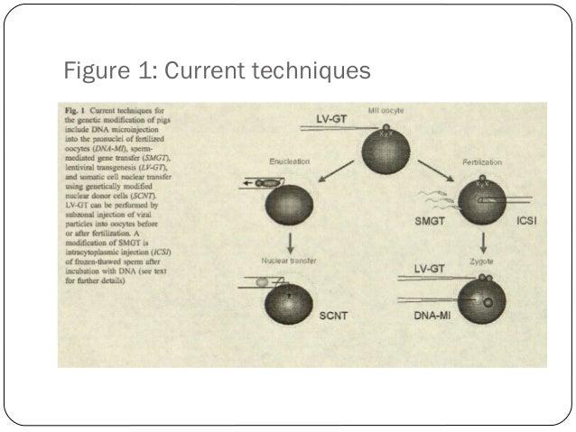 Figure 1: Current techniques  46