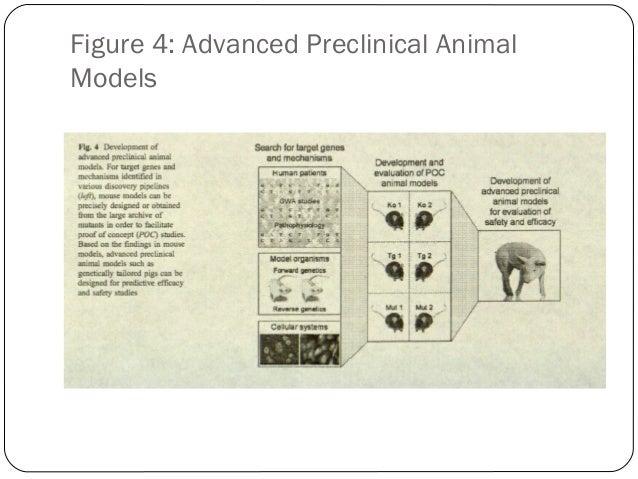 Figure 4: Advanced Preclinical Animal Models  48