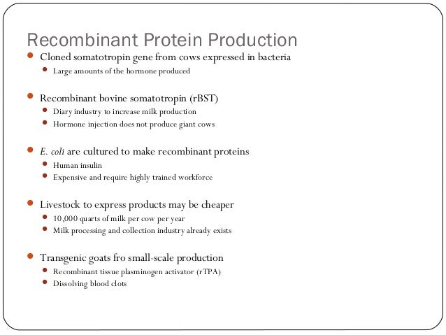 Recombinant Protein Production  Cloned somatotropin gene from cows expressed in bacteria  Large amounts of the hormone p...