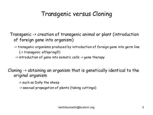 transgenic animals and plants