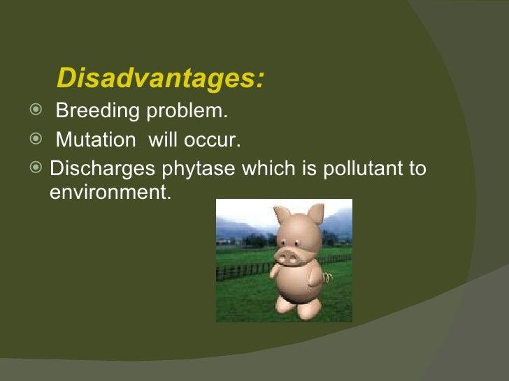 <ul><li>Disadvantages: </li></ul><ul><li>Breeding problem. </li></ul><ul><li>Mutation  will occur . </li></ul><ul><li>Disc...