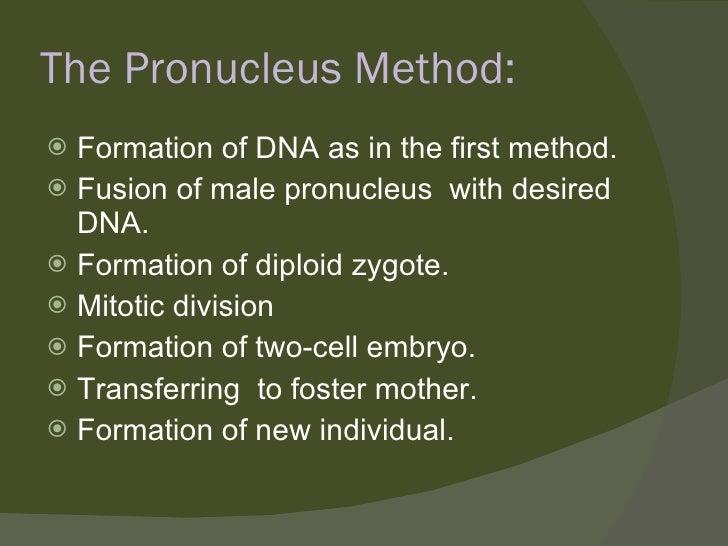 The Pronucleus Method: <ul><li>Formation of DNA as in the first method. </li></ul><ul><li>Fusion of male pronucleus  with ...