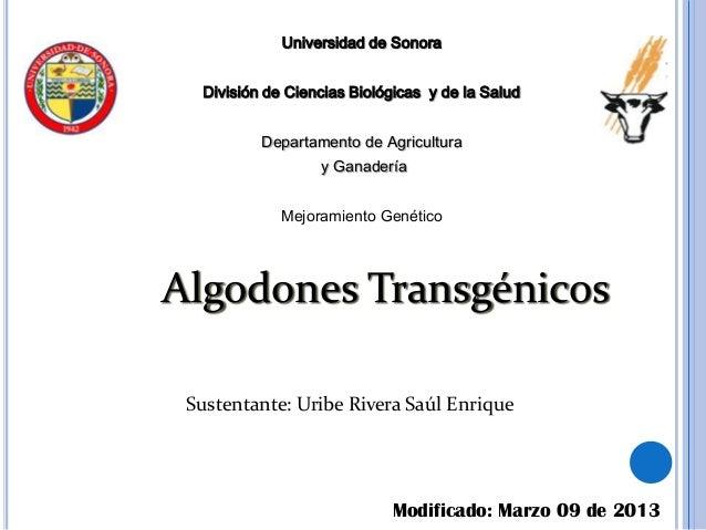 Universidad de Sonora  División de Ciencias Biológicas y de la Salud          Departamento de Agricultura                 ...