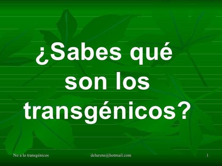 No a lo transgénicos [email_address] ¿Sabes qué  son los transgénicos?