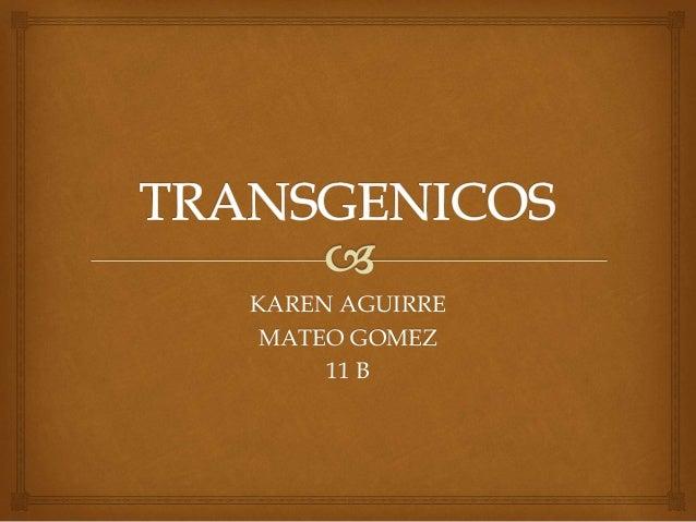 KAREN AGUIRRE MATEO GOMEZ 11 B