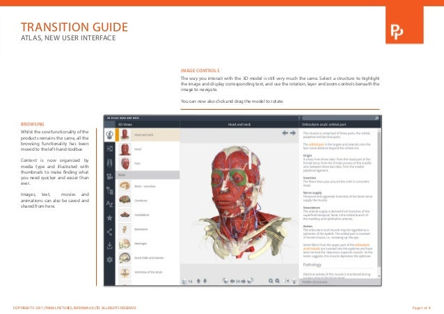 Primal\'s 3D Atlas of Human Anatomy has a new interface!