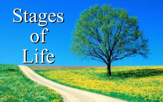 StagesStages ofof LifeLife