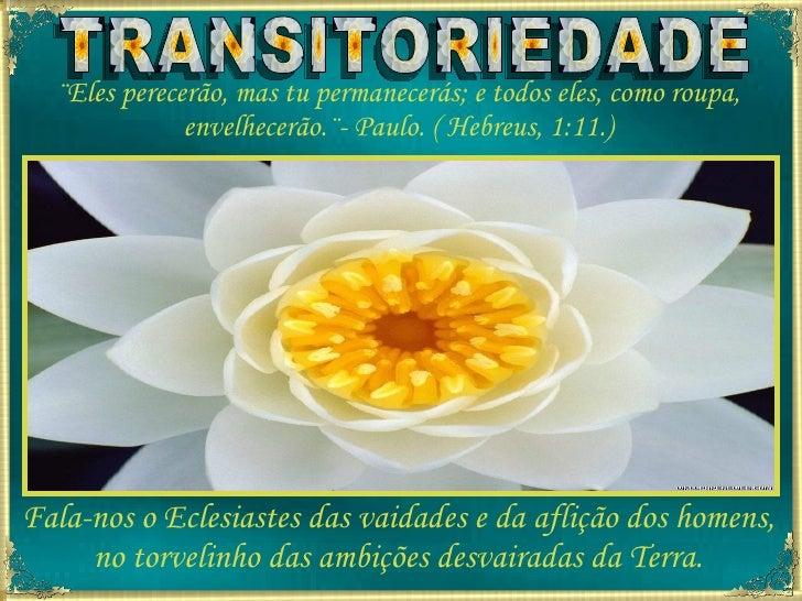 TRANSITORIEDADE ¨Eles perecerão, mas tu permanecerás; e todos eles, como roupa, envelhecerão.¨- Paulo. ( Hebreus, 1:11.) F...