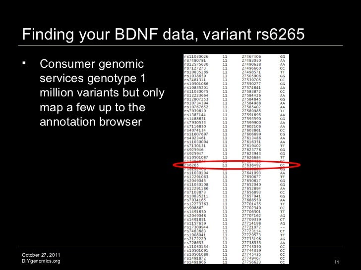Finding your BDNF data, variant rs6265 <ul><li>Consumer genomic services genotype 1 million variants but only map a few up...