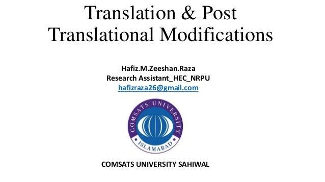 Translation & Post Translational Modifications Hafiz.M.Zeeshan.Raza Research Assistant_HEC_NRPU hafizraza26@gmail.com COMS...