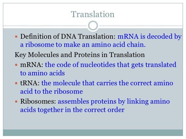 Transcription & translation ocr as/a level biology by bjs23.