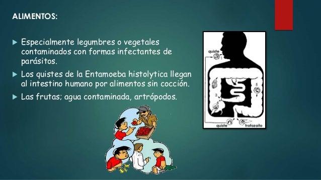SUELO:  Por materias fecales huevos y larvas de parásitos intestinales.  Medio de transmisión de los más eficaces.  Con...