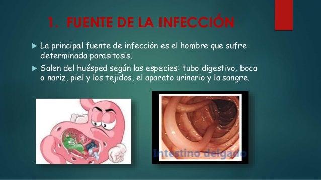 1. FUENTE DE LA INFECCIÓN  La principal fuente de infección es el hombre que sufre determinada parasitosis.  Salen del h...