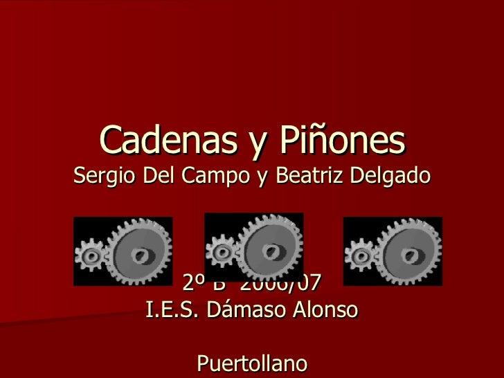 Cadenas y Piñones Sergio Del Campo y Beatriz Delgado 2º B  2006/07 I.E.S. Dámaso Alonso Puertollano