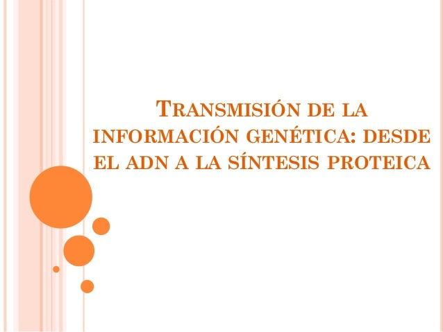 TRANSMISIÓN DE LA INFORMACIÓN GENÉTICA: DESDE EL ADN A LA SÍNTESIS PROTEICA