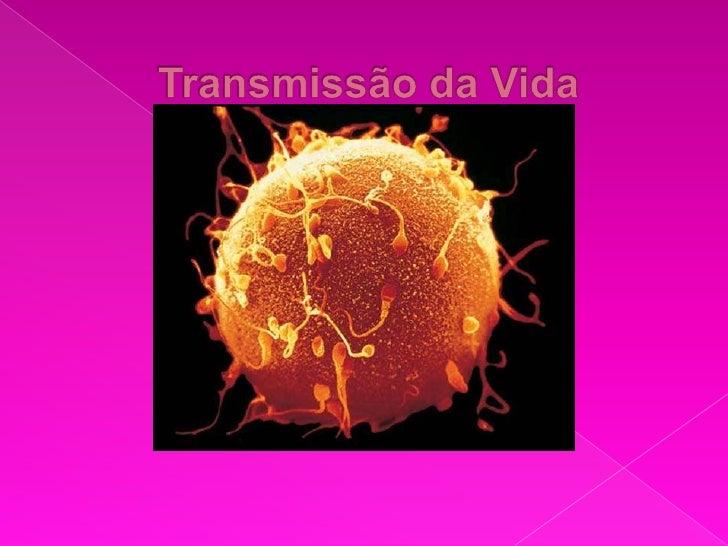Transmissão da Vida<br />