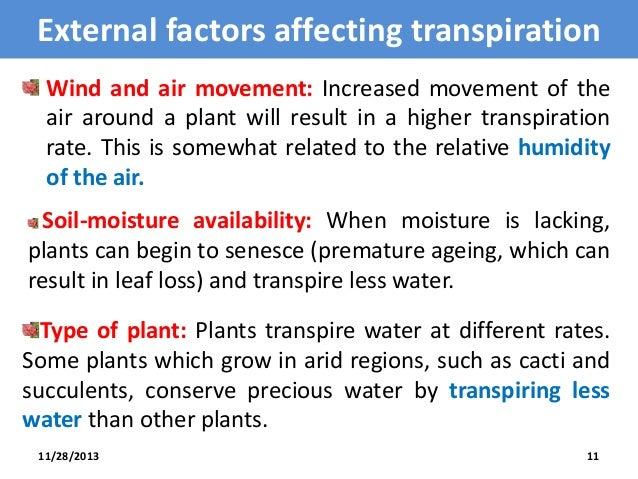 factors affecting transpiration