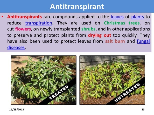 antitranspirants ppt