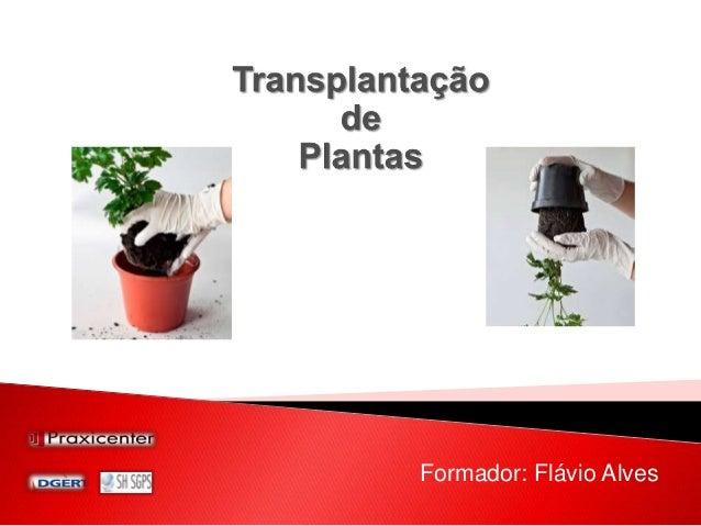 Formador: Flávio Alves