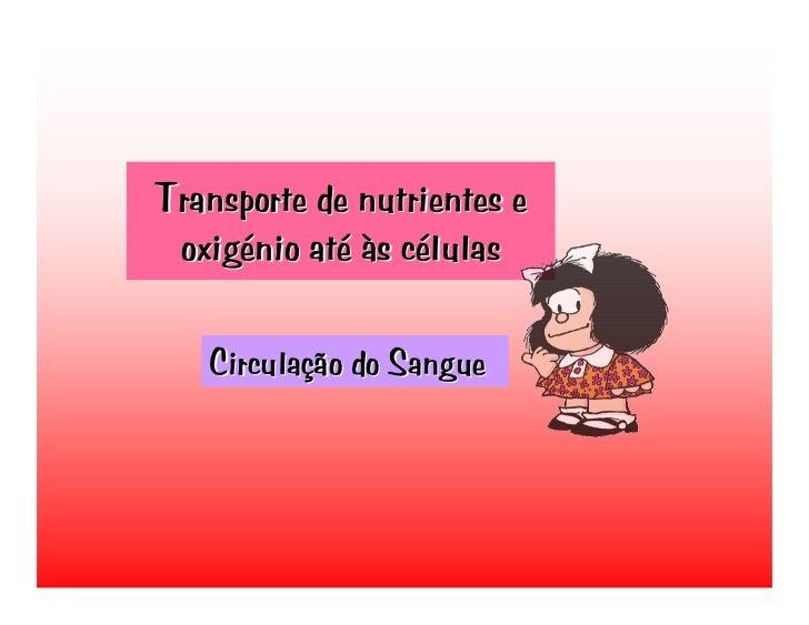 Transporte de nutrientes e  oxigénio até às células     Circulação do Sangue