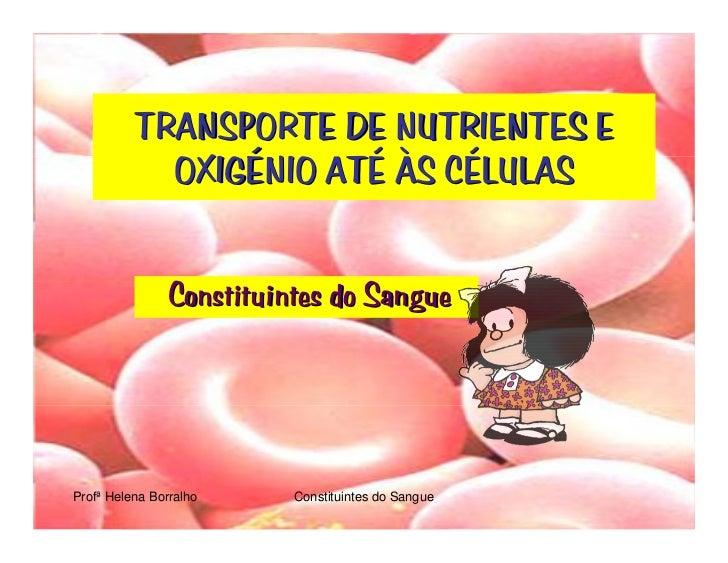 TRANSPORTE DE NUTRIENTES E             OXIGÉNIO ATÉ ÀS CÉLULAS                  Constituintes do Sangue     Profª Helena B...